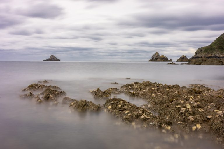 paysgae bord de mer Bretagne
